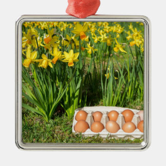 Eggs in box on grass with yellow daffodils metal ornament