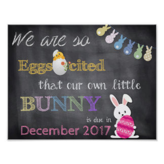 Eggscited Easter Pregnancy Reveal Announcement Poster