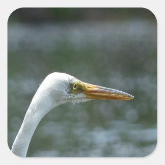 egret square sticker