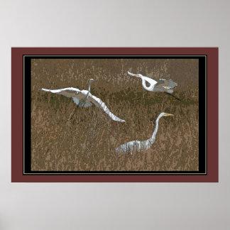 Egrets Art Print