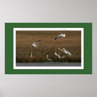 Egrets Seagulls Print