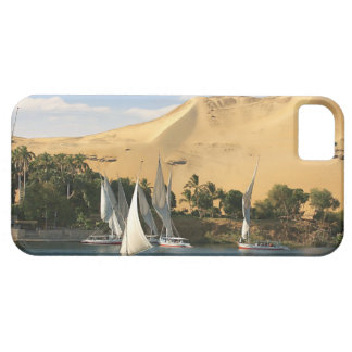 Egypt, Aswan, Nile River, Felucca sailboats, 2 iPhone 5 Covers