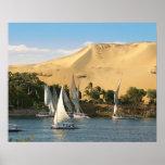 Egypt, Aswan, Nile River, Felucca sailboats, 2 Poster