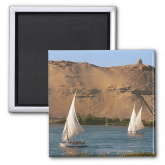 Egypt, Aswan, Nile River, Felucca sailboats, Square Magnet