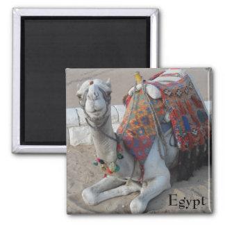 Egypt Camel Magnet