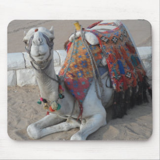 Egypt Camel Mouse Pad