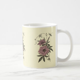 Egyptian Bindweed Botanical Illustration Coffee Mug