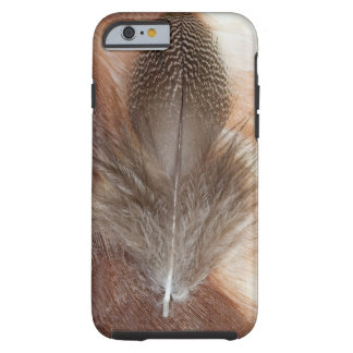 Egyptian Goose Feather Still Life Tough iPhone 6 Case
