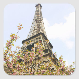 Eiffel Tower, Paris Square Sticker