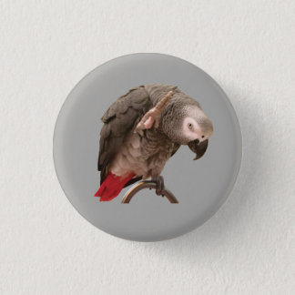 Einstein Parrot Waving 3 Cm Round Badge