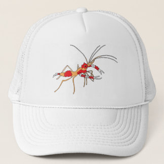 ekos shrimp cap
