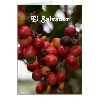 El Salvador Coffee Beans Greeting Cards