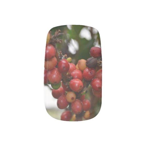El Salvador Coffee Beans Minx ® Nail Wraps