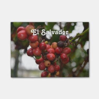 El Salvador Coffee Beans Post-it® Notes