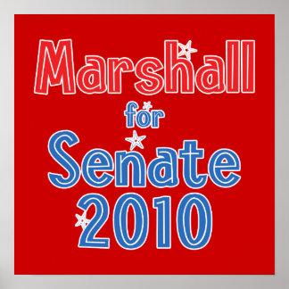 Elaine Marshall for Senate 2010 Star Design Poster