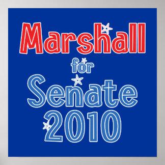 Elaine Marshall for Senate 2010 Star Design Print