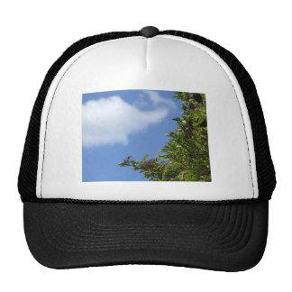 Elder Berries Trucker Hat