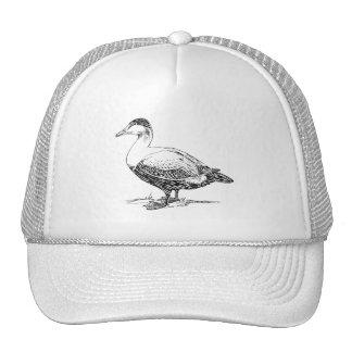 Elder Duck Bird Drawing Mesh Hats
