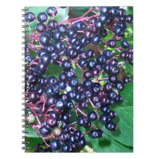 Elder spiral photo note book