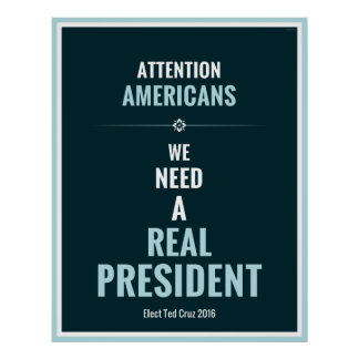 Elect Ted Cruz 2016 Poster