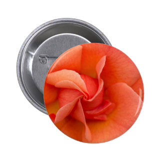 Election Day Rose Pinback Button