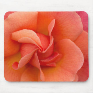 Election Day Rose Mouse Pads