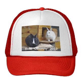 Elections 2012 cap