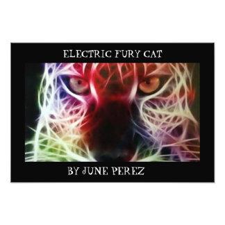 ELECTRIC FURY CAT PHOTO