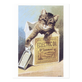 Electric Oil Kitten Trading Card