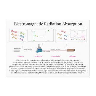 Electromagnetic Radiation Absorption Diagram Stretched Canvas Print