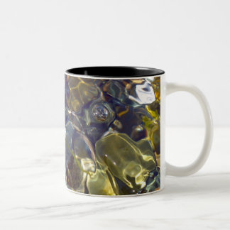 Elegant Abstract Colorful Stained Glass Two-Tone Coffee Mug