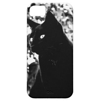 Elegant Black Cat - iPhone 5 Case