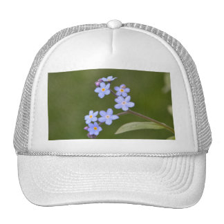 Elegant Blue Floral Cap
