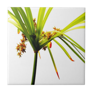 Elegant Botanical Design Small Square Tile