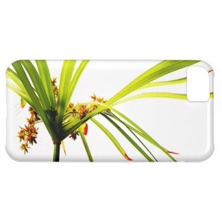 Elegant Botanical Pattern iPhone 5C Case