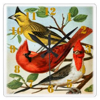 Elegant Cardinal Birds Square Wall Clock