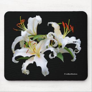 Elegant Casablanca White Oriental Lilies Mouse Pad