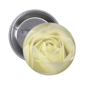 Elegant Cream Rose Pinback Button