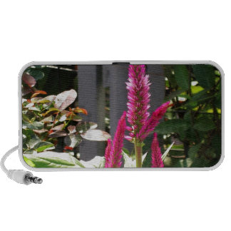Elegant Home Garden Flower TEMPLATE Resellers FUN iPod Speakers