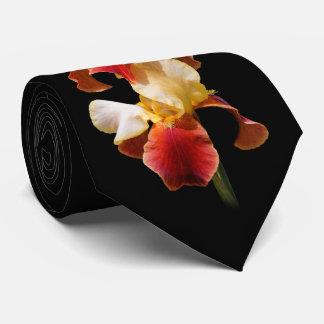 Elegant Multi-Colored Bearded Iris Germanica Tie