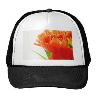 Elegant Orange Tulips Cap