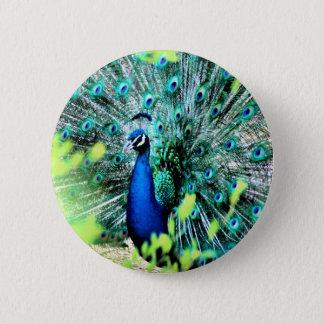 Elegant Peacock 6 Cm Round Badge