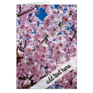 elegant pink cherry blossom tree photograph card