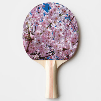 elegant pink cherry blossom tree photograph ping pong paddle