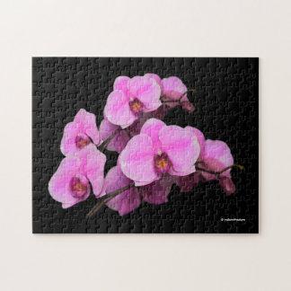 Elegant Pink Orchids Phalaenopsis on Black Jigsaw Puzzle