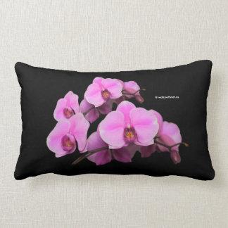 Elegant Pink Orchids Phalaenopsis on Black Lumbar Cushion