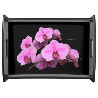 Elegant Pink Orchids Phalaenopsis on Black Serving Tray