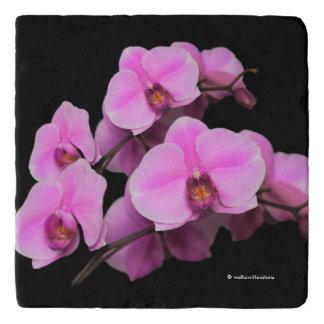 Elegant Pink Orchids Phalaenopsis on Black Trivet