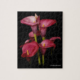 Elegant Purple Calla Lilies Puzzles