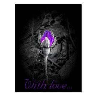 Elegant Purple Rosebud Color Splash Postcard